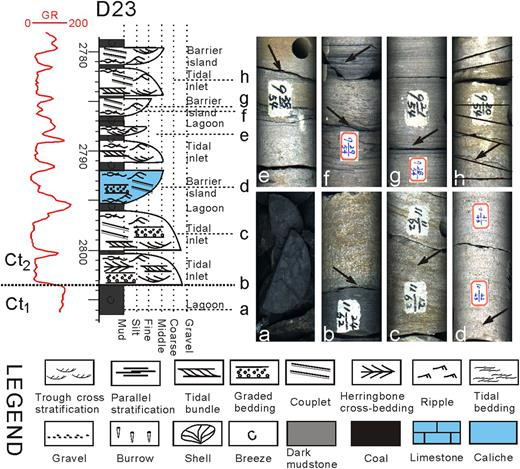 Discovery And Significance Of A Sedimentary Hiatus Within The
