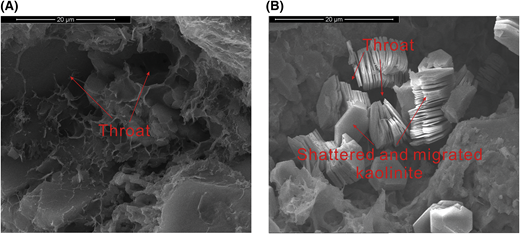 Photomicrographs showing the shattered and migrated kaolinite to block throats. (A) Scanning electron microscopy (SEM) image showing throats before brine-flow test (EU35, nitrogen permeability [kg] = 0.190 md, porosity [ϕ] = 9.48%). (B) An SEM image showing throats blocked by shattered and migrated kaolinite (EU35, kg = 0.147 md, ϕ = 9.47%).