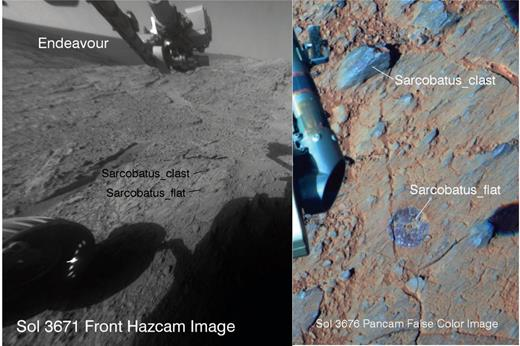 Portion of a Front Hazcam image is shown on the left for the Sarcobatus in situ targets for a rock clast (two overlapping measurements) and the brushed matrix target (Sarcobatus_flat). Pancam false color image of the targets is shown on the right. For reference the brushed spot is ~3.8 cm wide. Hazcam product ID 1F454088547FFLCDBAP1148R0M1. Pancam product IDs 1P454529822RADCDBAP2589L2C1, 1P454529907RADCDBAP2589L5C1, and 1P454529979RADCDBAP-2589L7C1.