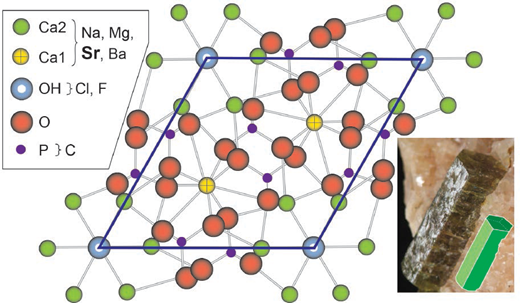 Atomic arrangement of apatite, showing locations of calcium (Ca1 and Ca2 sites), hydroxyl (OH), phosphorus (P), and oxygen (O). Legend shows common elemental substitutions. Notice that Sr, as well as Mg, Na, and Ba, can substitute for Ca. Image and sketch of apatite crystal from a marble from Canada illustrate apatite crystal symmetry.