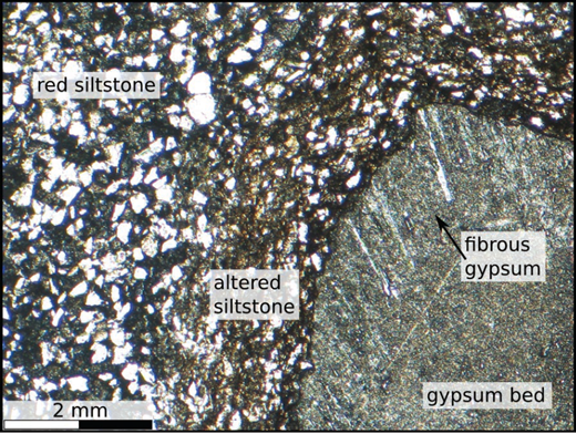 PPL photomicrographs of fibrous gypsum adjacent to the altered siltstone. The occurrence of fibrous gypsum at the contact implies that at one point in time there was an open fracture between these two sedimentary units allowing the flow of reactive fluids.