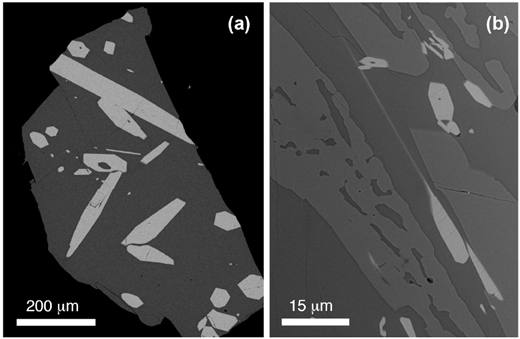 Experimental run products from BA experiments showing glass-rich materials and large, equant apatite crystals. (a) BA1 (H-C). (b) BA15 (HCFCl), the most strongly crystallized experiment containing glass + clinopyroxene + apatite.