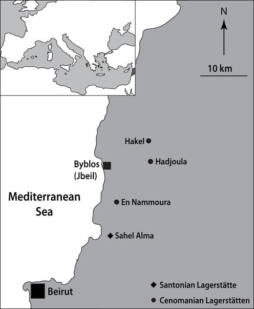 Map of Lebanon showing the main fossiliferous localities yielding exceptionally preserved Cenomanian faunas (Hadjoula, Hakel, En Nammoura Lagerstätten) and Santonian faunas (Sahel Alma Lagerstätte).