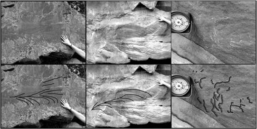 Field pictures of plumose or hackle plumes on fracture planes in the Fontainebleau quartzite. Upper line: raw pictures. Lower line: highlight of the plume structures. Left: Bois Persan quarry, site 5; centre and right: Madagascar quarry, site 1. Location Fig. 1, Table 1.