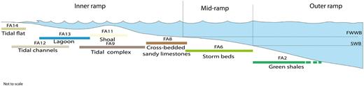 Schematic profile of a mixed siliciclastic-carbonate ramp showing facies association distribution according to Burchette and Wright (1992), corresponding to facies associations occurring in the upper part of the studied interval (Picún Leufú Formation). The location of the different zones is based on the position of fair weather wave base (FWWB) and the storm wave base (SWB).