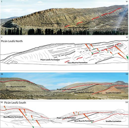 Panoramic view and line drawing of the major T-R sequences and high-frequency T-R sequences in the north and south Picún Leufú Anticline. The southern part of the Picún Leufú Anticline exposes the most proximal facies of the siliciclastic shelf. This facies corresponds to cross-bedded sandstones attributed to the shoreface environment.