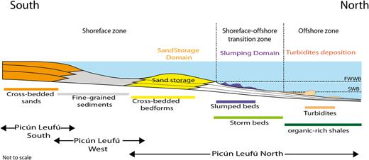 Interpretative shelf profile and facies association distribution extended to the Picún Leufú depocentre. The profile is exaggerated to highlight sand storage on the lower shoreface zone.
