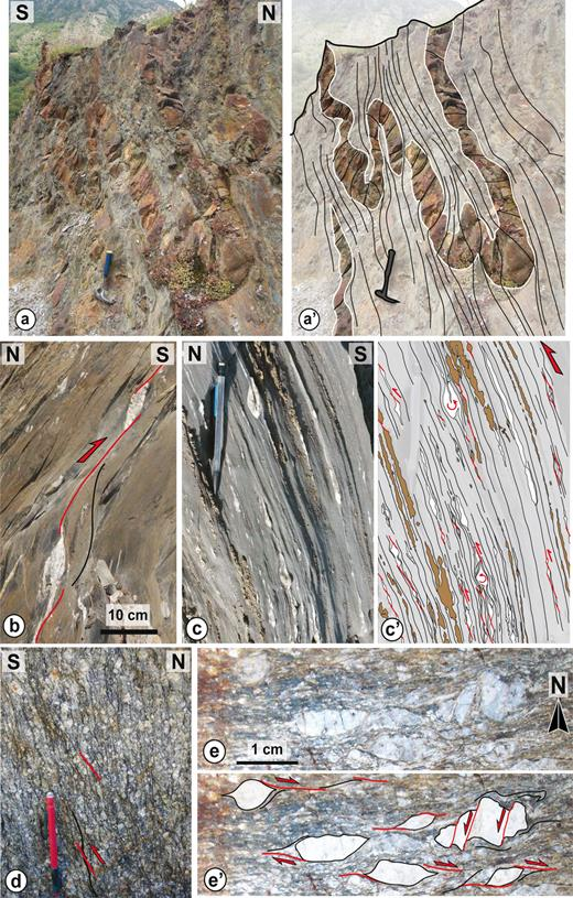 Illustrations of typical structures, deformation patterns and kinematics from the Superstructure of the Axial Zone. (a)-(a') Penetrative Ss axial-planar cleavage in Cambro-Ordovician siltstones and sandstones (Southwest of the Aston dome; Fig. 2). (b) Top-to-the South asymmetrical boudinage of quartz veins in the superstructure (Cambrian to Ordovician series). (c)-(c') South-Side-Up asymmetrical boudinage of calcite veins (white) and sandstones layers (brown) within Devonian marbles (Superbagnères, southwestern flank of Bossost dome, see Fig. 8a for location). (d) Mylonitic orthogneiss from the reverse-dextral Mérens Shear Zone showing North-side-up, retrogressive (greenschist facies) C' shear bands (Southern margin of the Aston dome; Fig. 2). (e)-(e') Plane view of mylonitic orthogneiss showing the dextral component of shear in the Têt-Perthus shear zone (north-eastern margin of the Canigou dome; Fig. 2).