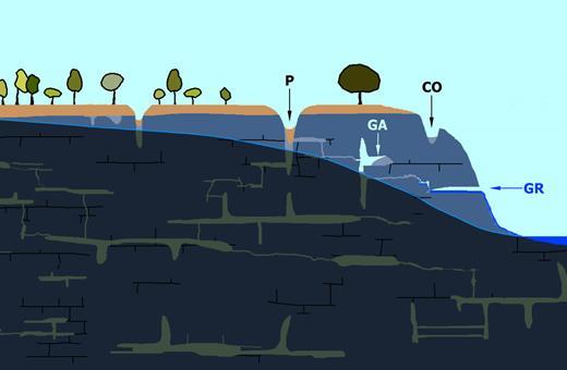 Agrandissement du premier cadre rouge. La surface piézométrique, en s'abaissant, a placé un coin du massif en zone vadose. Une circulation au travers de l'altérite s'est établie entre la surface et le versant. Cette circulation a vidé partiellement une série de fantômes de roche ce qui a ouvert une grotte résurgence (GR; exemple des résurgences de Val Imagna en Lombardie, Italie). Le tassement de l'altérite résiduelle a provoqué un effondrement de surface avec apparition d'un puits (P), ainsi que l'ouverture de vides internes sous forme de grotte aveugle (GA). Un ancien couloir (CO) a été partiellement vidé de son altérite et peut jouer un rôle de piège à sédiments. Remarquons que l'altitude de la grotte résurgence n'est pas dictée par un niveau altitudinal de la rivière aérienne mais par la position préalable du fantôme de roche.