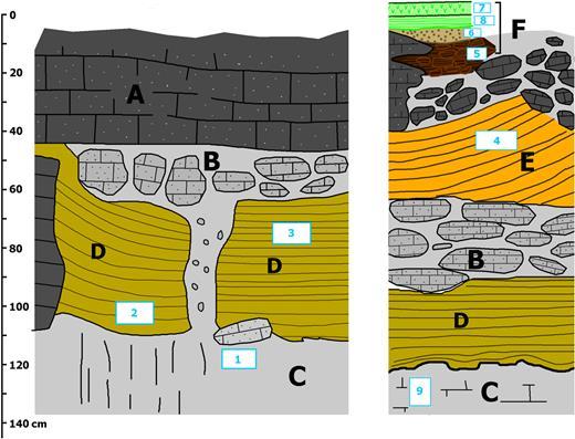 """Coupe lithostratigraphique du """"coquelicot"""". Les numéros correspondent aux 9 échantillons prélevés. A. Roche mère un peu fantômisée. B. Blocs fantômisés dans une matrice d'altérite plus meuble. C. Altérite meuble. D. Formation argilo-limoneuse jaune stratifiée. E. Formation argileuse jaune sombre stratifiée. F. Ensemble supérieur comprenant: (5) une argile à blocaux, (6) un dépôt d'entroques libres, (7 et 8) une formation stalagmitique."""
