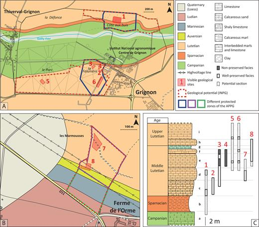 """The location and distribution of visible geological sites of Grignon and the Ferme de l'Orme on their geological map and correlated section. A. In Grignon, the protected zone of the APPG is highly reduced compared to the geological potential defined by the INPG (map adapted from Merle et al., 2016). B. In the Ferme de l'Orme, two types of areas with different protective measures were defined in order to facilitate the negotiation of the APPG. In the purple area it is forbidden to excavate beyond 1m, whereas in the green area it is authorised up to 4m. All other regulatory measures apply to both areas. C. The well-preserved sections outcropping in the sites of the Ferme de l'Orme and Grignon complement each other, which highlights their stratigraphic interest. A-1) The Côte-aux-Buis, 2) Old galleries, 3) The Falunière, 4) The Riding hall, 5) The Parc, 6) The Maugère, B-7) Edge of the forest, 8) The quarry. C-a) The Craie à Silex, b) Argiles plastiques, c) Bed with Campanile giganteum, d) Bed with Milioles and Orbitolites, e) Bed with Avicularium lithocardium and some plants, f) Bed with Potamides and Batillaria, g) Green marls with Lymnea and Staliola, equivalent of the """"Banc Vert"""" of Paris, h) Bed with Sigmesalia, i) Marnes et caillasses."""