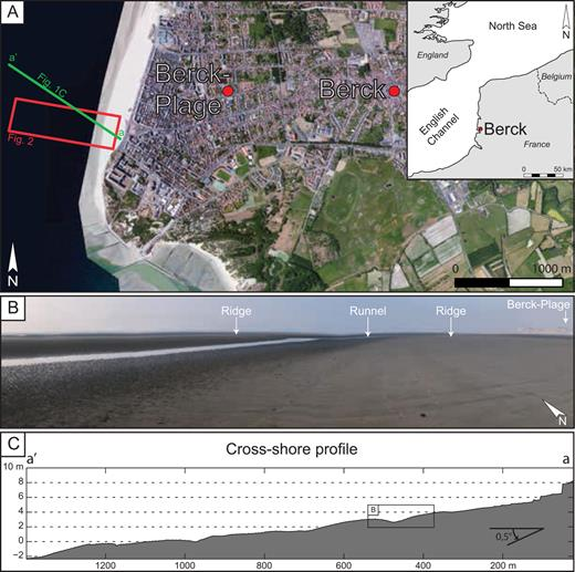 (A) Satellite image of the study area, from Bing Maps. The study area is a part of the intertidal zone of Berck-Plage (North France) orientated in N-S axis on the English Channel side; red rectangle: location of the ortho-images (see Fig. 2) achieved on the area, covering an area of ca. 0.58 km2. (B) Part of the intertidal zone of Berck-Plage at low tide displaying a ridge and runnel morphology. (C) Cross-shore profile of the intertidal zone showing the ridge and runnel morphology.