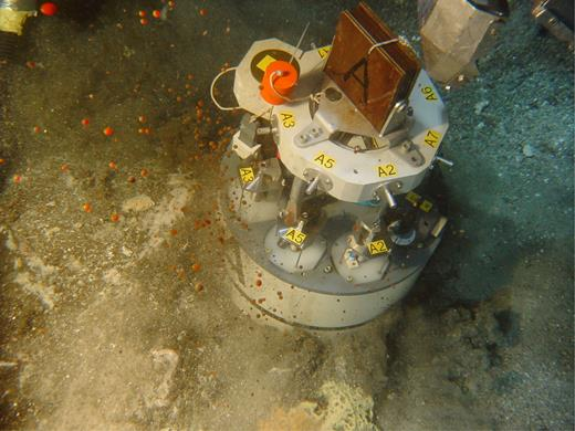 Photo of oil discharges over hydrothermal chimney. The base of the benthic chamber is 40 cm in diameter. See Figure 2 for location (red triangle).