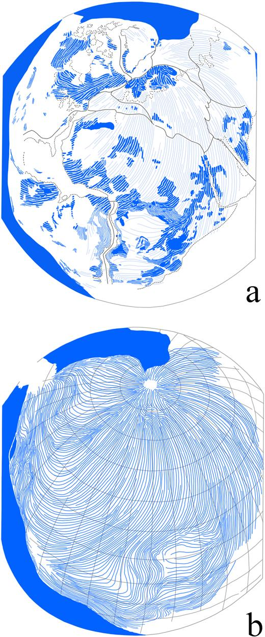 "Explanation of Plate I (redrawn from Choubert, 1935). ""Reconstruction of the Precambrian Continental Blocks. This construction highlights the continuity of Precambrian fold directions and their tendency to join at a single point"". Fig. 2a shows the fold directions in the Precambrian shield areas (dark blue) within the circum-Atlantic continents, as perceived and drawn by Choubert (1935), and their supposed extensions (light blue) in the intermediate areas. Fig. 2b shows a coherent pattern, as imagined by Choubert converging to a point north of Scandinavia, and suggested to be related to a general westward drift of the continents caused by the eastward rotation of the Earth, causing deformation within the sialic crust. This apparently assumed that all Precambrian orogenies could be broadly correlated, irrespective of age, and had originated from the same process, linked to the rotation of the globe rather than to movements of individual plates and collisions between those. It also assumed that all of the continents remained fixed in the same position throughout the Precambrian, and did not start to drift apart until the early Palaeozoic."