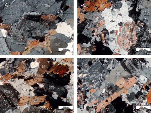 Microphotographs of granites samples A: C2-4, B: CG, C: CF and D: CC from the Jebha conglomerate. Qtz: quartz; Kfs: K-feldspar; bt: biotite; mu: muscovite; cd?: cordierite pseudomorphosed into pinnite (?).