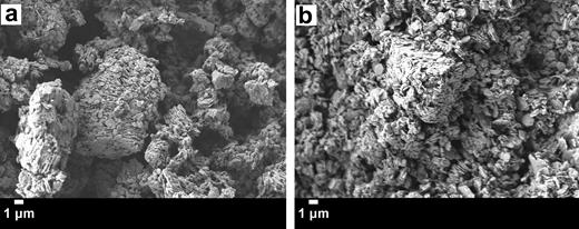 SEM micrographs magnified 4,000 × of kaolinite (0.3 g) dispersed in (a) 15 mL of water with 0.05 g of guar gum (86% kaolinite/14% guar gum) and (b) 37.5 mL of water, 11.25 mL of ethanol, and 0.075 g of ethyl cellulose that was previously dissolved in the ethanol (80% kaolinite/20% ethyl cellulose).