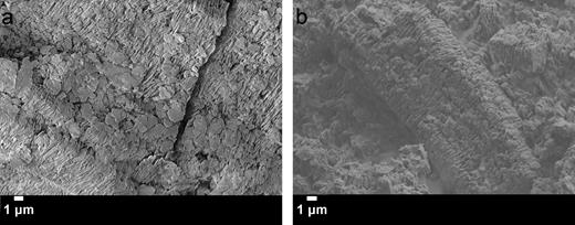 SEM micrographs of kaolinite (0.3 g) dispersed in (a) 5 mL of cyclohexane, 4.5 mL of toluene, and 0.225 g of ethyl cellulose magnified 4,000 × and (b) dispersed in 5 mL of cyclohexane, 9 mL of toluene, and 0.45 g of ethyl cellulose magnified 4,300x.