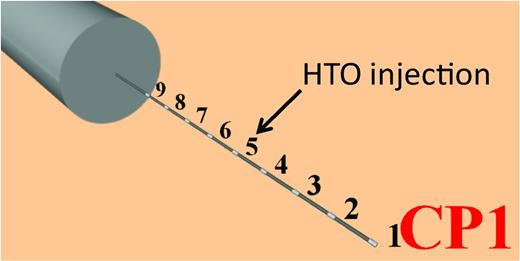Set-up of the CP1 experiment: a piezometer with nine filters is placed horizontally next to the URF in Boom Clay. The numbers indicate the filters. The distance between the centres of consecutive filters is one metre. Initially, tracer (HTO) was injected in filter 5.