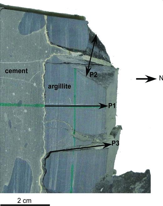 Picture of the concrete/argillite interface. The P1 perturbation was studied in this paper.
