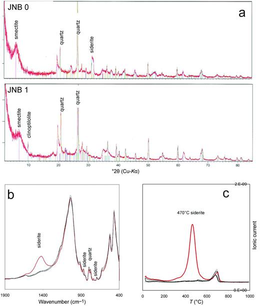 Identification of siderite in the contact sample (0.1 cm, red curves) of JNB by (a) XRD, (b) IR, and (c) DTA-MS.