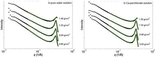 The small-angle scattering patterns of samples in water (left) and Ca-perchlorate solution (right) as a function of magnitude of scattering vector q. The green dashed line is the best fit from SAXS modelling.