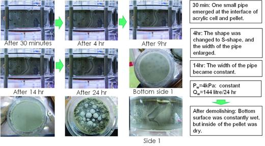 Case 6; experiment with constant inflow rate which caused piping. Distilled water was fed with inflow rate of 0.01 l/min.