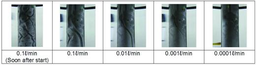 Case 12. The process of piping according to the inflow rate in the case of the large pellets.