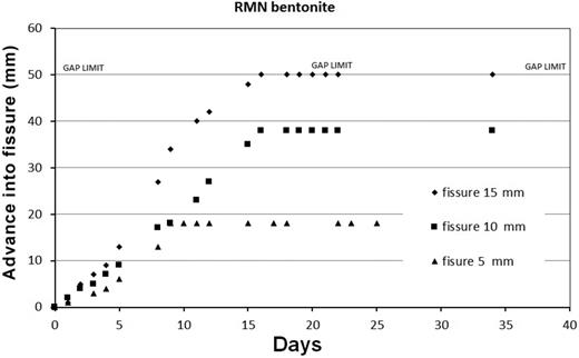 Results for RMN bentonite.