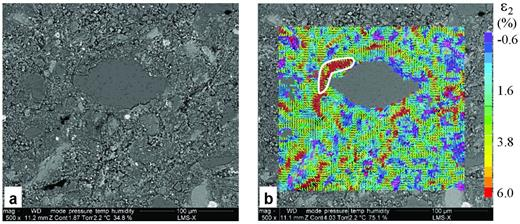 Observation zone 3 of plane 1: (a) BSE image and (b) ε2 strain map induced by a RH change from 35% to 99%. A micro-crack induced by wetting (i.e. decohesion of a coarse quartz grain from the clay matrix) results in a high strained domain, outlined in (b).