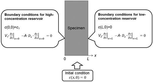 Initial and boundary conditions for the through-diffusion experiments.