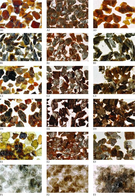 Photomicrographs of samples before exfoliation (column 1) and after thermal (column 2) and H2O2 (column 3) exfoliation. Row A: KL-2, row B: Ver-18, row C: Ver-2, row D: MK-1, row E: PB, row F: Phl-3. Samples KL-2 and Phl-3 show no visible exfoliation; all other samples show ready exfoliation with both thermal and H2O2 treatment.