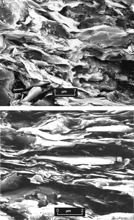 Photomicrographs showing (upper) weakly oriented shale with open pore structure (inter-aggregate pores) and (lower) well oriented shale with slit and wedge-shaped pores between the platy clay aggregates.
