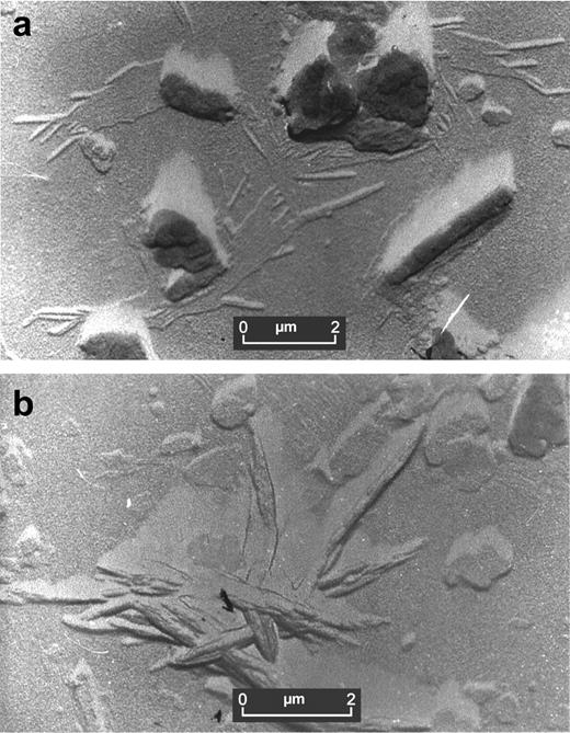 TEMs of ball clays from (a) Devon and (b) Ukraine showing thick, chunky morphology of kaolinite and thin stubby, lath-like form of illite.