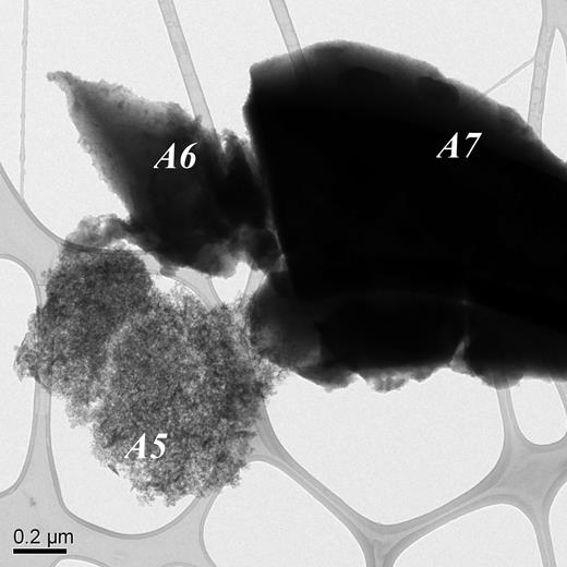 Transmission electron micrograph of opaline silica (A5) and glass particles (A6, A7).