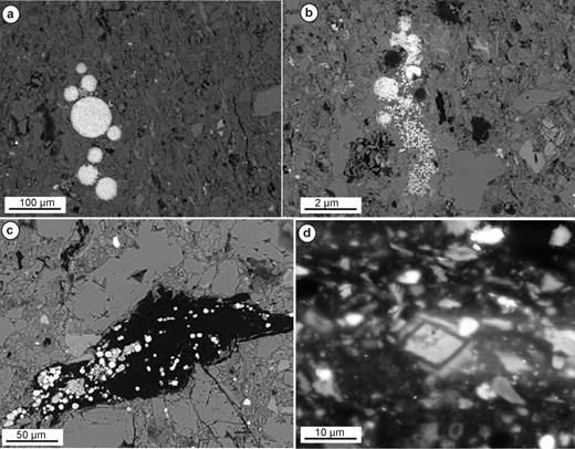 (a, b, c) Backscattered electron images of pyrite within the Mancos Shale (brightest mineral phase in each image). Note the presence of framboidal pyrite (in a and b), scattered micron-size pyrite crystals (in b) and pyrite associated with organic matter (in c). (d) SEM-CL image showing the presence of a zoned crystal of dolomite cement.