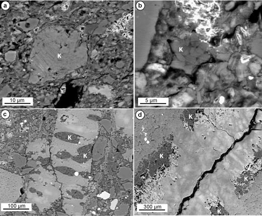 Backscattered electron images of authigenic kaolinite (K). (a, b). Kaolinite replacing detrital grains, possible feldspar. (c) Kaolinite infilling borings within a calcite shell fragment. (d) Kaolinite as an early vein-filling phase within a septarian concretion.