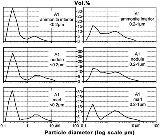 Mastersizer particle size distribution patterns of the <0.2 μm e.s.d. and 0.2–1 μm e.s.d. fractions from large ammonite (A1) and its nodular chalk surrounds, Ferriby Formation, Speeton.