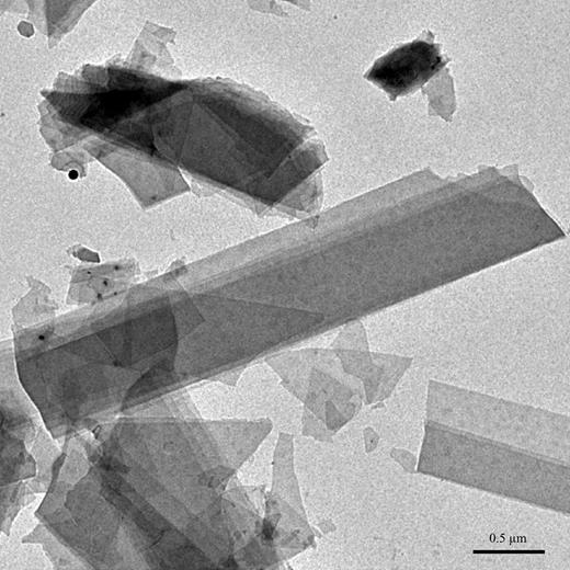 TEM image of the Arkansas rectorite showing typical laths and fragments that overlie each other partially. The small black spots (left side of image) are unknown particles.