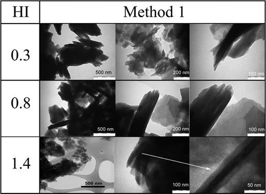 TEM images of the nanostructures prepared by Method 1 at various magnifications.