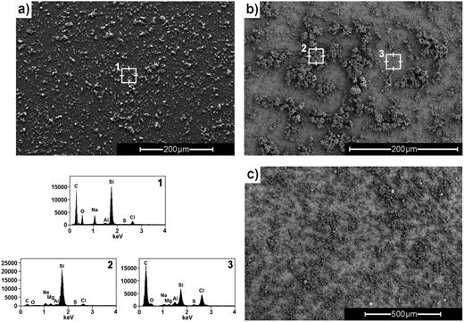 SEM images (a–c) and EDX spectra at points 1–3 indicated on the PANI thin film (a, 1) and PANI/MMT thin film (b, 2 & 3 and c).