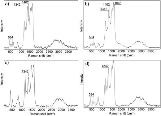 Raman spectra: (a) of the PANI powder; (b) of the PANI/MMT powder; (c) of the PANI thin film; and (d) of the PANI/MMT thin film.