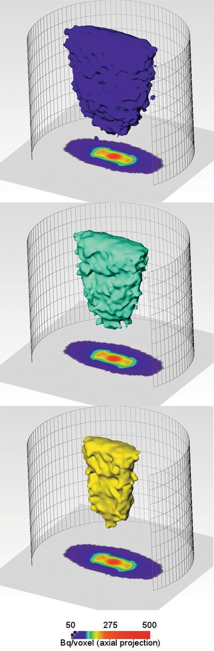 Isosurfaces (100, 150, 200 Bq/voxel) and projections onto the xy plane of the 22Na+ activity concentration distribution, 10 days after tracer injection.