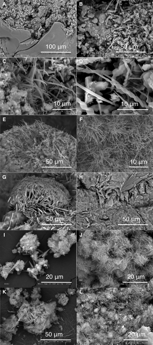 SEM images of the reacted samples: (A, B, C, D) HB4 cell; (E, F) HB5 cell; (G) small cell 3; (H) small cell 5; (I) bentonite 60°C, montmorillonite/portlandite 2:1; (J) bentonite 120°C, montmorillonite/portlandite 2:1; (K) bentonite 120°C, montmorillonite/portlandite 3:1; and (L) montmorillonite 120°C, montmorillonite/portlandite 2:1.