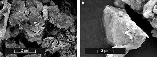 SEM image of synthetic Na-montmorillonite: (a) reacted for 1 month in neutral conditions in the presence of Ti powder; (b) SEM image of a μm-sized Ti particle partially covered by clay platelets.