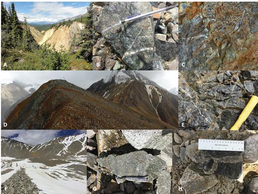 Select photos from the Orange Hill-Bond Creek study area. A) View looking north at the Fe-stained California Gulch area, Orange Hill deposit. B) Stream cobble of quartz-chalcopyrite-molybdenite stockwork veining from north end of Orange Hill. C) Stockwork veining in diorite/granodiorite in gulch north of Orange Hill. D) View of the Bond Creek ridge. E) Stockwork quartz-chalcopyrite-pyrite veins at creek level, Bond Creek. F) Cirque in Nabesna pluton at head of the east fork of Bond Creek with minor iron staining (loc. 8 discussed in Results section). G) Pyritic fracture surfaces in glacial debris from cirque in F. H) Potassically altered selvage of quartz-sulfide veins from cirque in F.