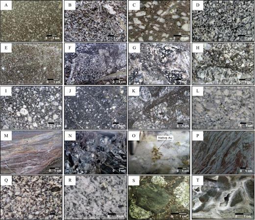Photographs of rock units at La Colosa deposit. A. Fine- to medium-grained diorite porphyry (E0). B. Crowded texture diorite porphyry (E1). C. Coarse-grained diorite porphyry (E2). D. Medium-grained diorite porphyry (EDM). E. Fine-grained diorite porphyry (E3). F. Intrusive breccia (EBX1). G. Intrusive breccia (EBX2). H. Intrusive breccia (EBX2). I. Medium- to coarse-grained diorite porphyry (I1). J. Fine- to medium-grained diorite porphyry (I2). K. Intrusive breccia (IBX). L. Coarse-grained tonalite porphyry. M. Schistose wall rock with bands of secondary biotite and albite patches. N. Contact breccia (SBX). O. Free Au COL010 at 328.9 m in coarse-grained diorite porphyry (I1). P. Schistose wall rock with secondary biotite and actinolite-chlorite bands. Q. Coarse-grained diorite porphyry at San Antonio. R. Coarse-grained diorite with propylitic alteration at San Antonio. S. Subrounded to subangular clast of contact breccia (SABX) at San Antonio. T. Hydrothermal breccias with clast of schistose wall rock cemented by quartz + carbonates at San Antonio.