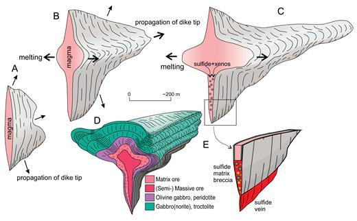 Stages in propagation of a transitional dike to chonolith transition. (A, B) Lateral propagation of crack-filling dike, initiation of selective melting, and intrusion along a favorable horizontal stratum in country rock. (C) Continuing lateral propagation along favorable horizon, aided by suitable stress regime and preexisting structural grain caused dike to transition into tube-like chonolith. (D) Idealized geometry of a Kalatonge-like funnel-tube intrusion (Barnes et al., 2017a). (E) Detail of lower edge of dike showing formation of sulfide matrix breccias and sulfide vein forming at infiltration-melting front into fractured process zone at dike tip.