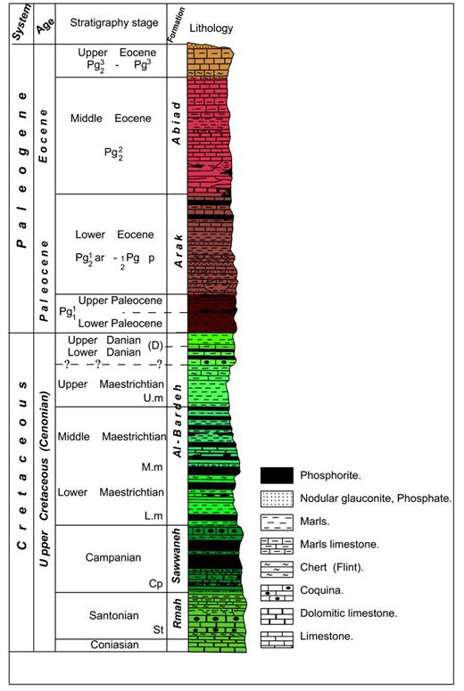 Typical geologic column of the phosphate deposits from central Syria.