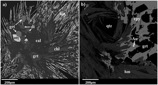 Backscattered electron (BSE) images of: a. Specular hematite (hm) rosette with a core comprised of calcite (cal), chlorite (chl), magnetite (mt), diopside (di) and euhedral andradite garnet (grt); b. Hematite rosette set in quartz (qtz), partially intergrown with chalcopyrite which contains inclusions of andradite garnet and native gold (Au).
