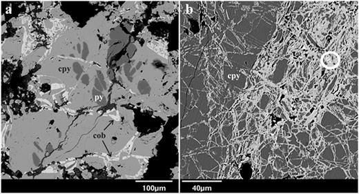 BSE-images of: a. Early pyrite (py) partially replaced by chalcopyrite (cpy). Also shown is late cobaltite (cob) developed along fractures in the chalcopyrite and pyrite. b. Intensely fractured chalcopyrite grain with subsequent cobaltite (light gray) and aikinite-bismuthinite (circled) developed along the fractures.